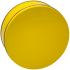 2C Lemon Yellow