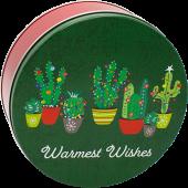 3C Festive Cacti (cs/15)